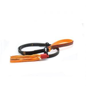 Red Robin hondenriem – DWAM